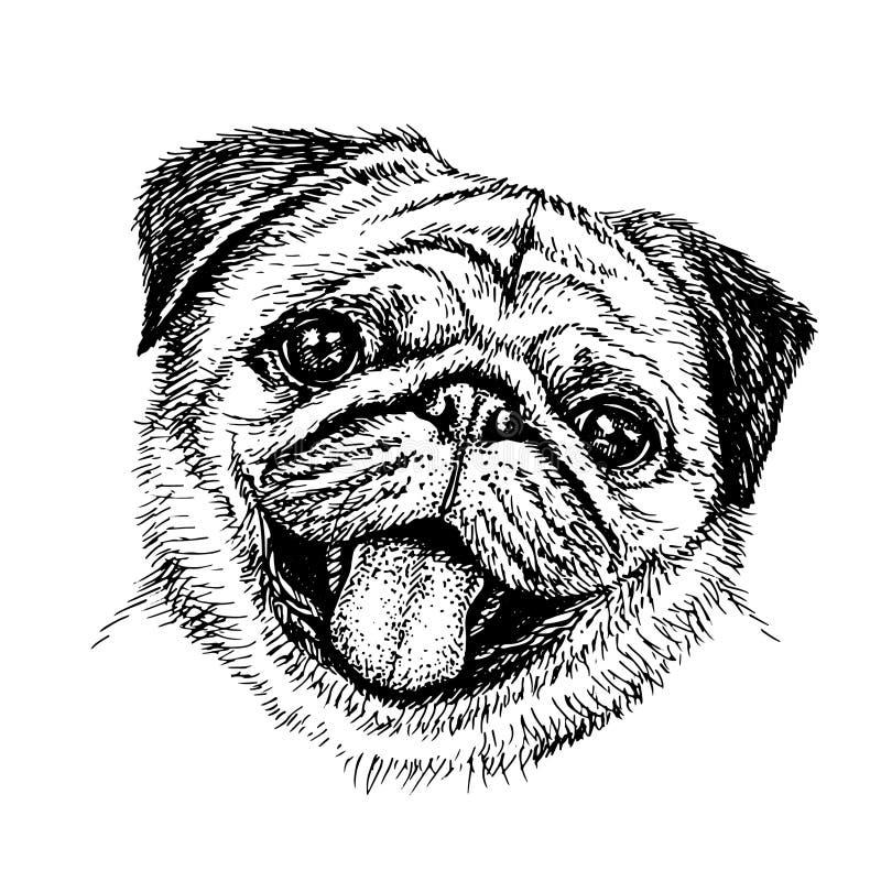 Nakreślenie pies pug słodki royalty ilustracja