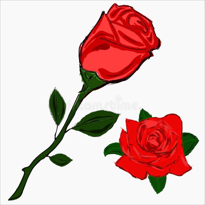 Nakreślenie róża i kwiat wzrastaliśmy. royalty ilustracja