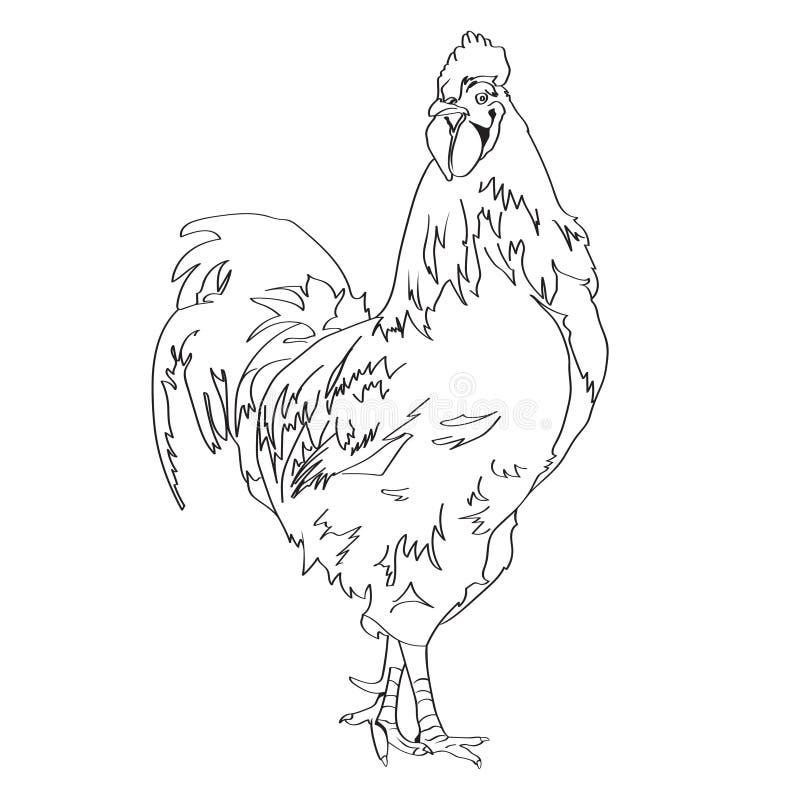 Nakreślenie rysunek kogut 3 ilustracji