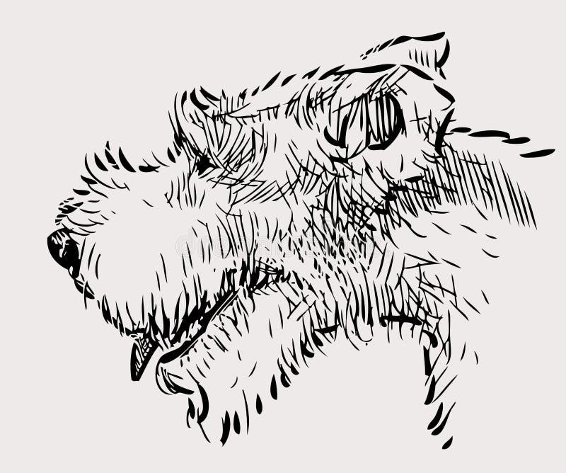 Nakreślenie terier głowa ilustracja wektor