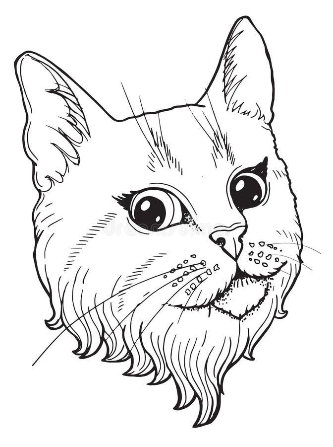 Nakreślenie z portretem kot ilustracji