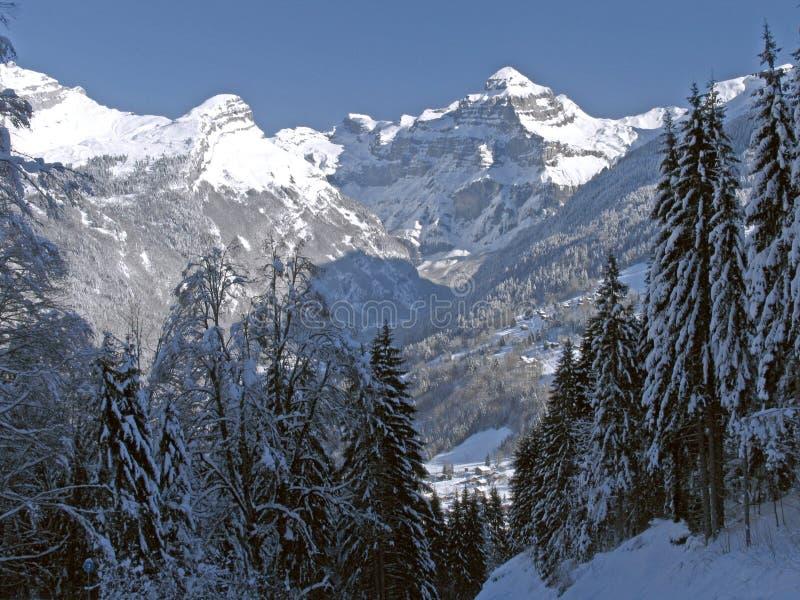 Nakrywająca Flaine Szczytowa Wykładająca śniegu Dale Drzew Fotografia Stock