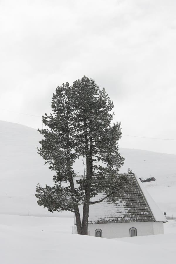 Nakrywający góry, dom i drzewo, obrazy royalty free