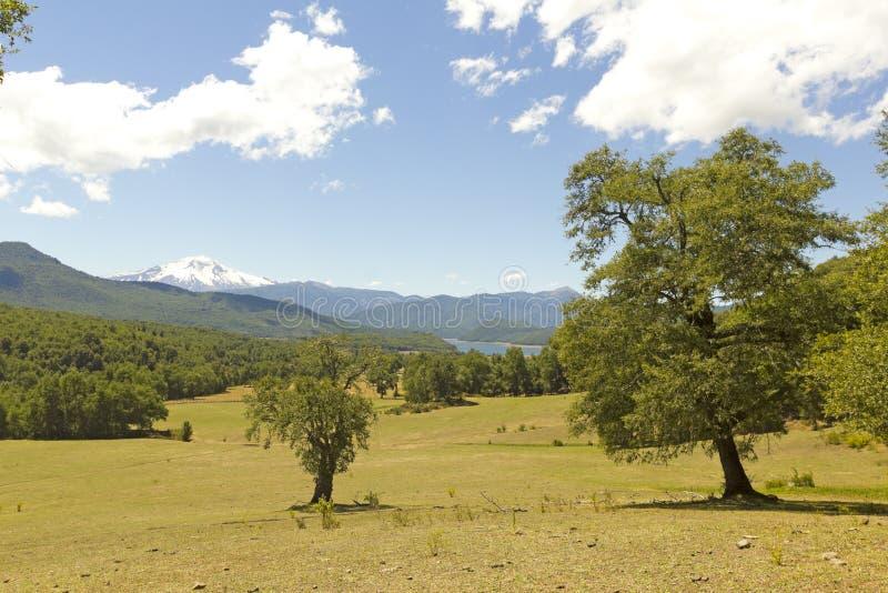 Nalcas Nationaal Park, Chili royalty-vrije stock foto