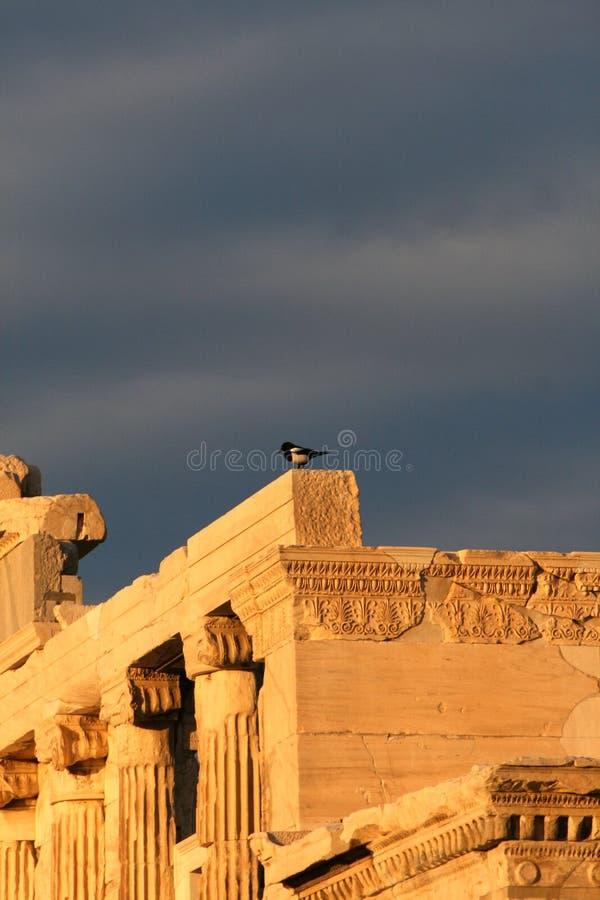 należy zwrócić szczególną erechtheum Greece athens fotografia stock