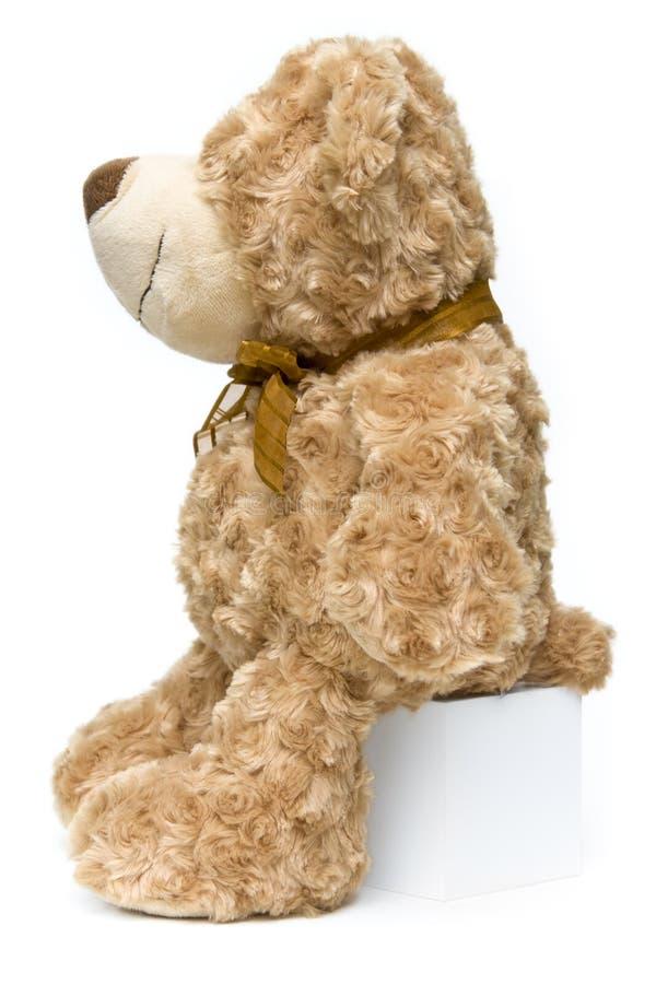 nalle för brun fluffig sida för björn plattform arkivfoton