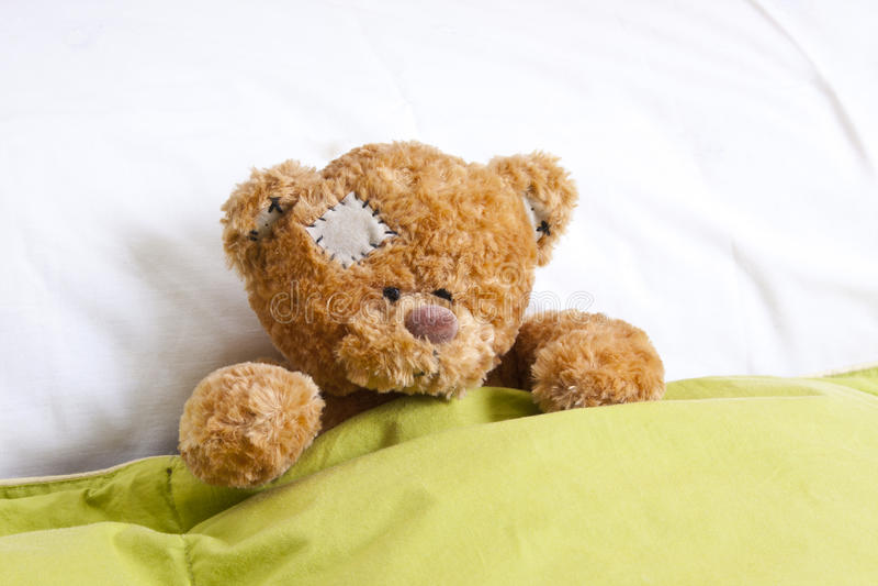 Nallebjörn i säng arkivbild