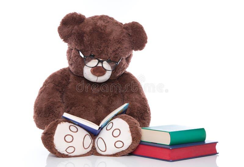 Nallebjörn med exponeringsglas som läser berättelser för isolerad jul - royaltyfri bild