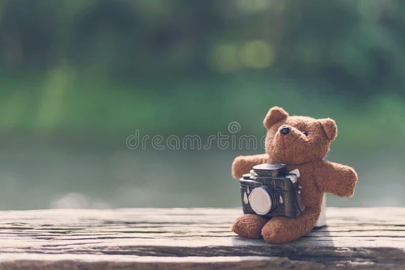 Nallebjörn med kameran med landskapsikt royaltyfria foton