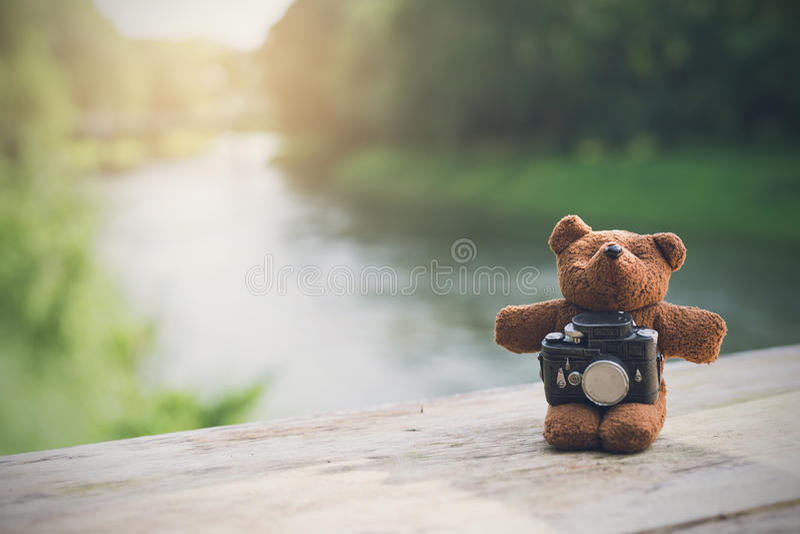 Nallebjörn med kameran med landskapsikt royaltyfri bild