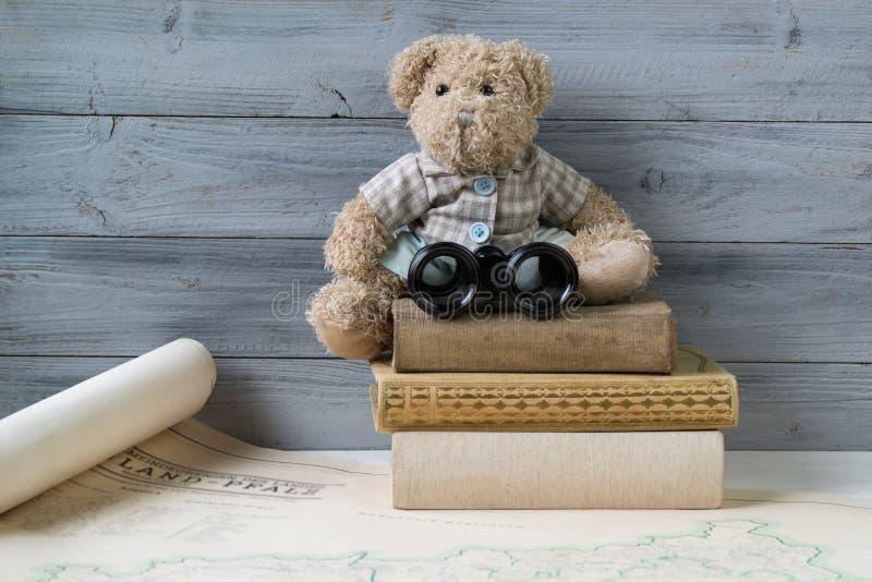Nallebjörn med kikare som sitter på bunten av gamla böcker arkivfoto