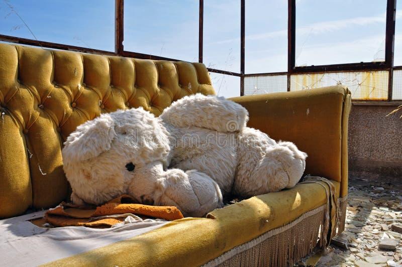 Nallebjörn och soffa i övergiven byggnad arkivfoto