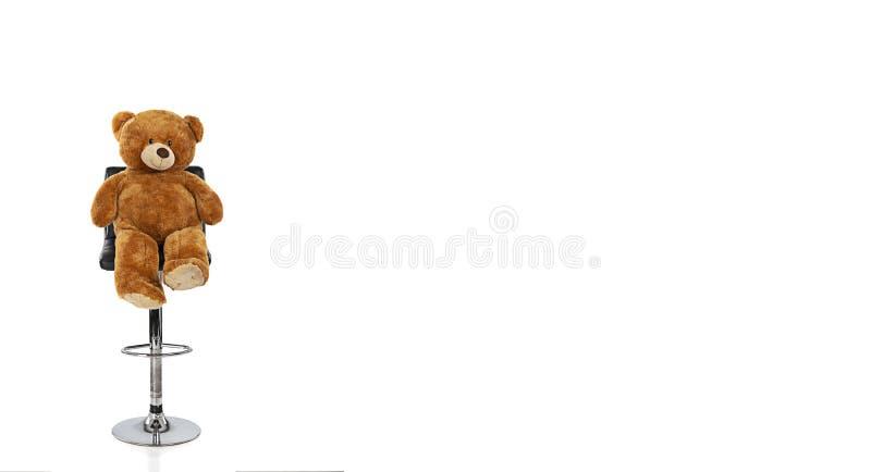 Nallebjörn på en stol med en vit bakgrund royaltyfri bild