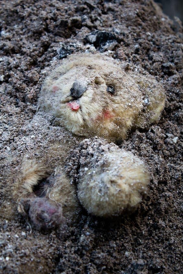 Nallebjörn som begravas i en hög av askaen royaltyfri fotografi