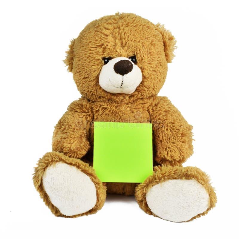 Nallebjörn som isoleras på vitt rymma ett ark arkivbild