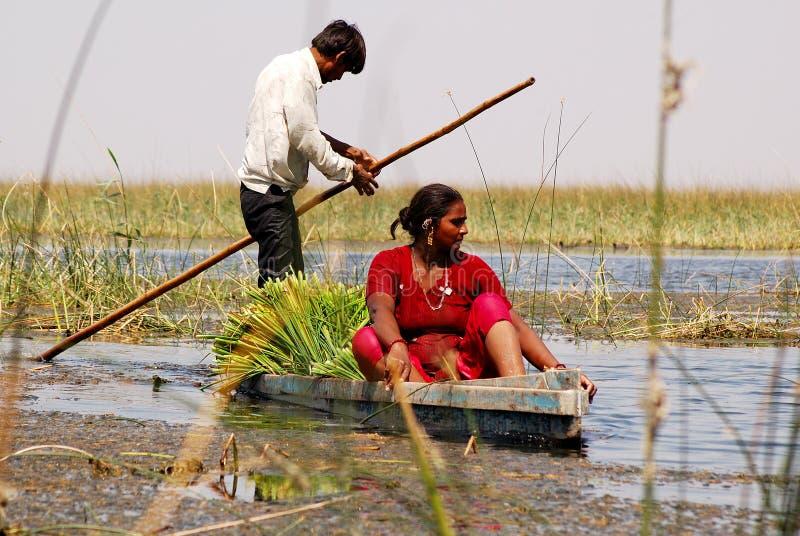 Nalsarobar in Gujarat royalty-vrije stock afbeeldingen
