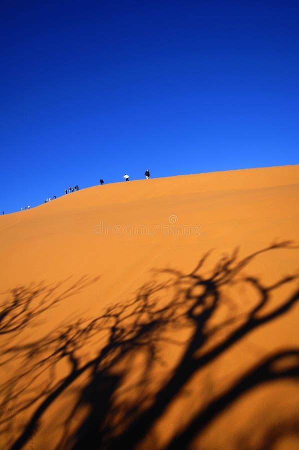 Namíbia fotografia de stock