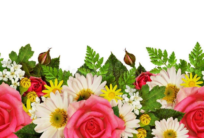 Nam, asters en wilde bloemenrand toe stock afbeeldingen