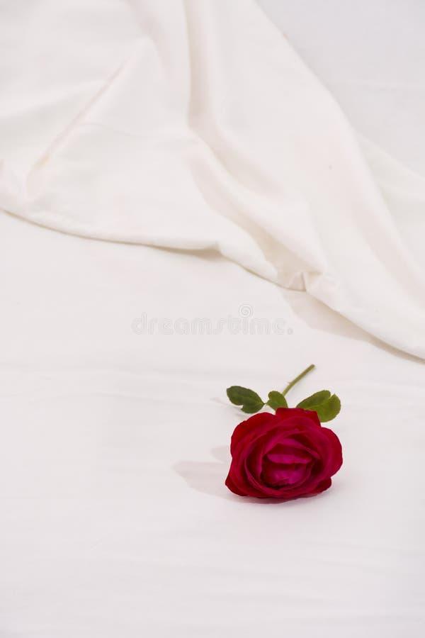 Nam in bed toe royalty-vrije stock afbeelding