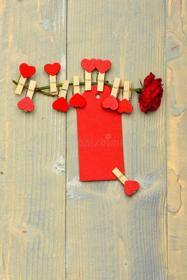 Nam bloem met uiterst kleine spelden met harten op stam toe Gelukwens en wensenconcept Bloem met lege markering of kaart op bleek royalty-vrije stock fotografie