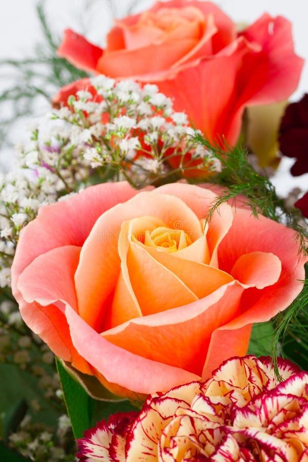Download Nam bloem toe stock afbeelding. Afbeelding bestaande uit bloem - 29507413