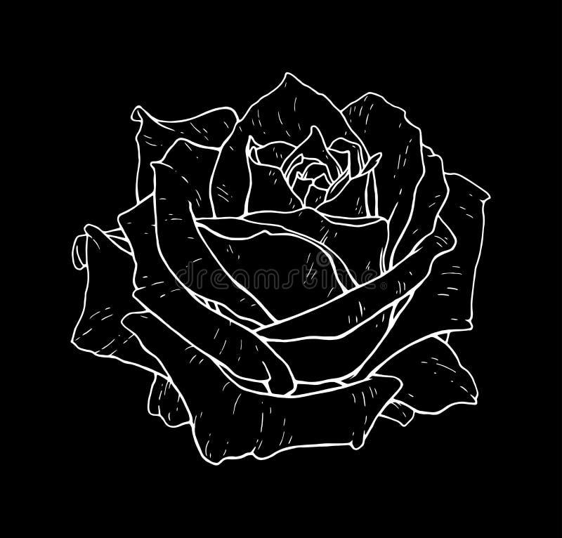 Nam bloem zwart-wit vectorillustratie toe Mooie wit nam geïsoleerd op zwarte achtergrond toe Element voor ontwerp van tatoegering vector illustratie