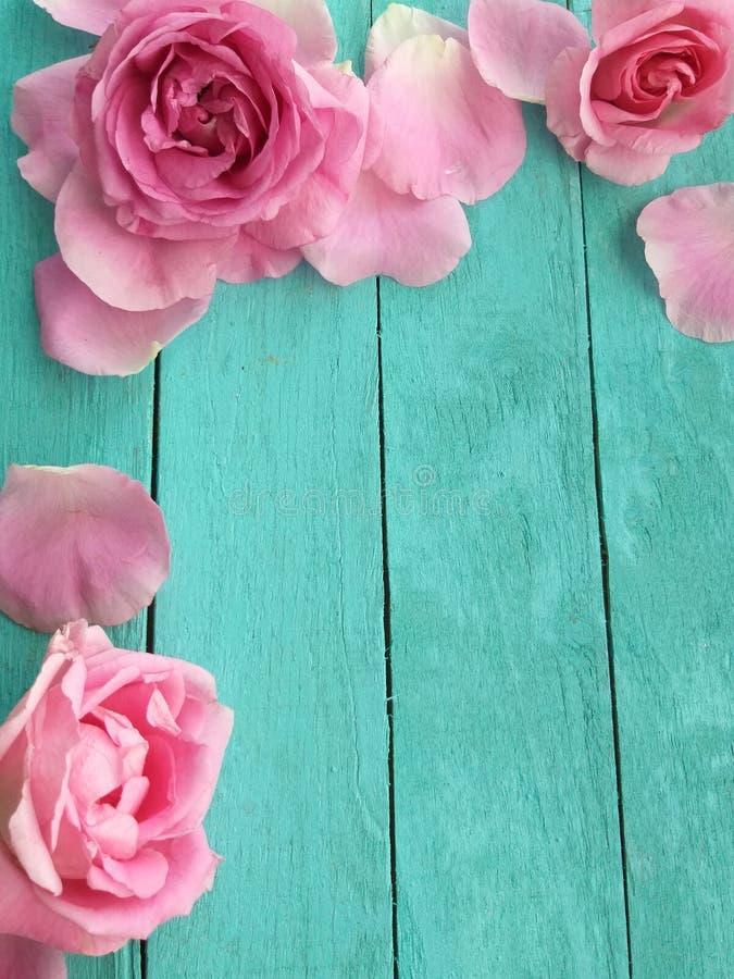 Nam bloemblaadjes bloemenontwerp toe stock foto