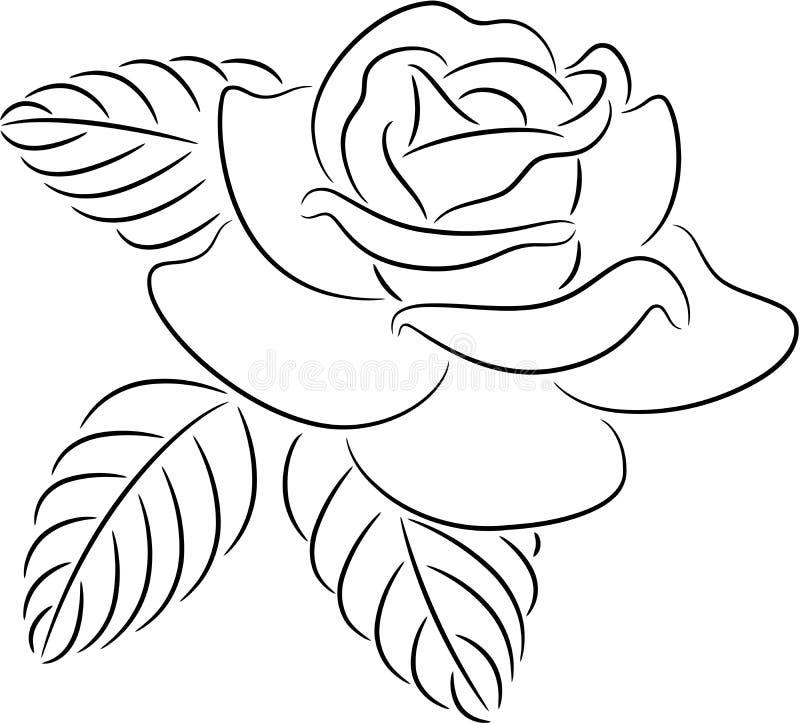 Nam contour toe stock illustratie
