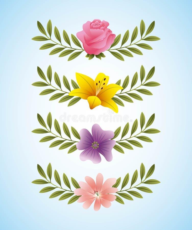 Nam de gevoelige bloemen toe van de hibiscusmaagdenpalm en de tak verlaat decoratie stock illustratie