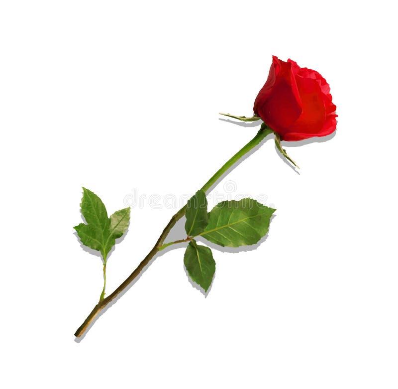 Nam de hoogst gedetailleerde bloem van rood geïsoleerd op wit toe royalty-vrije illustratie