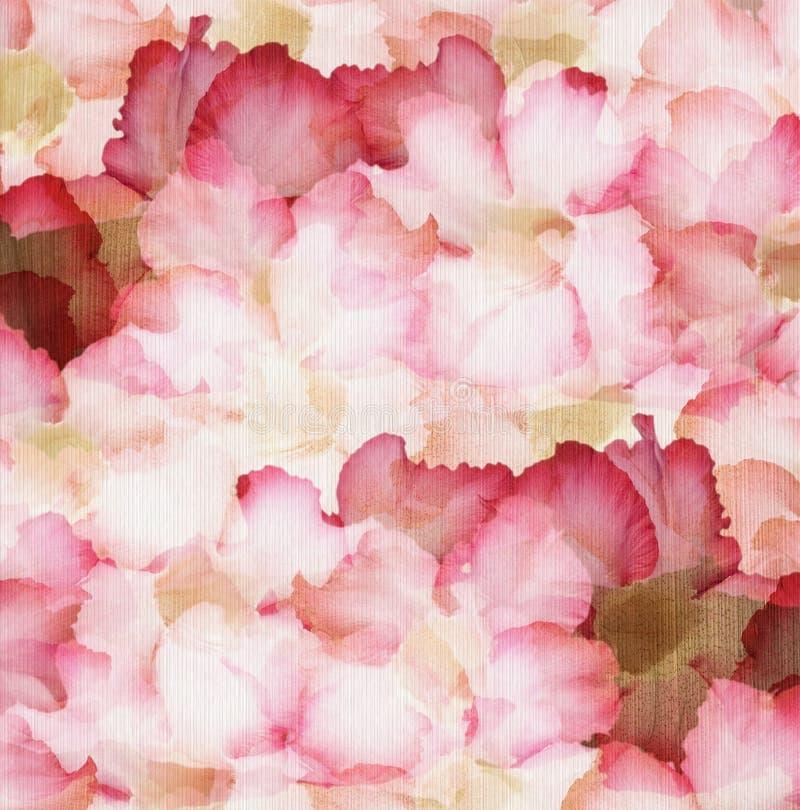 Nam de Roze en Rode Woestijn van de wolk Bloemblaadjes toe stock illustratie