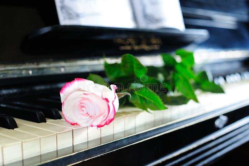 Nam en piano toe royalty-vrije stock fotografie