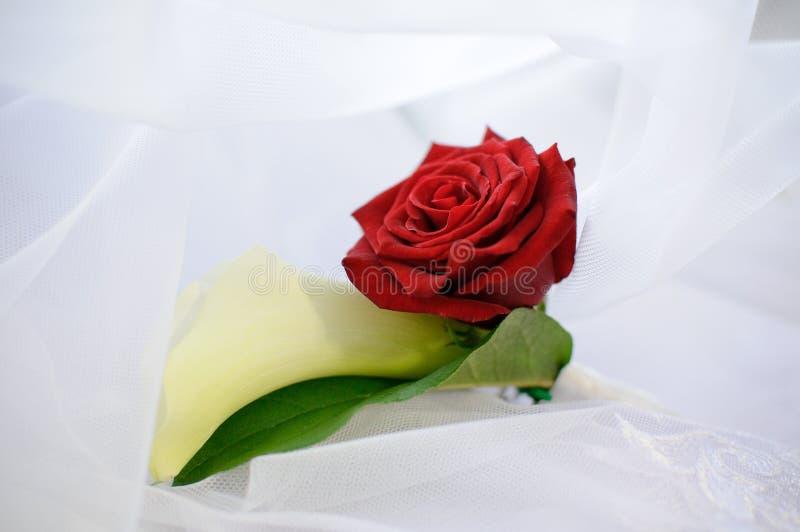 Nam en witte bloem in een knoopsgat toe royalty-vrije stock afbeeldingen