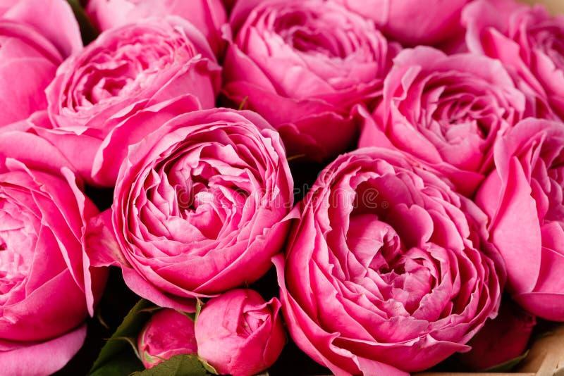 Nam pioen Misty Bubbles toe Boeketbloemen van roze rozen in glasvaas op donkere grijze rustieke houten achtergrond Sjofele elegan stock afbeelding