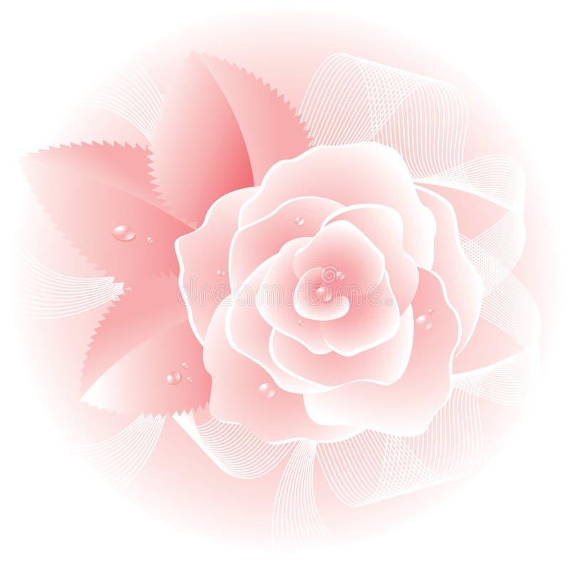 Nam roze toe. Vector. vector illustratie