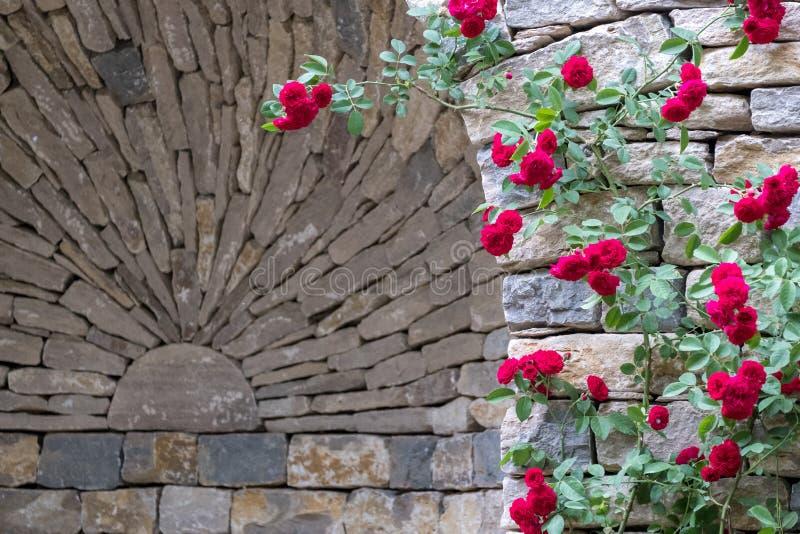 Nam struik met rood beklimmend rozen toe, tegen droge steenmuur die worden gefotografeerd royalty-vrije stock afbeelding