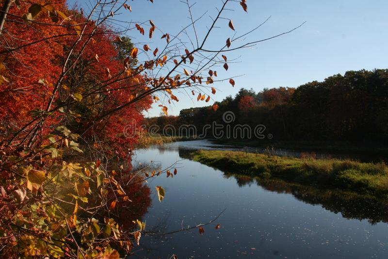 Namaste nedgångögonblick i New England royaltyfri fotografi