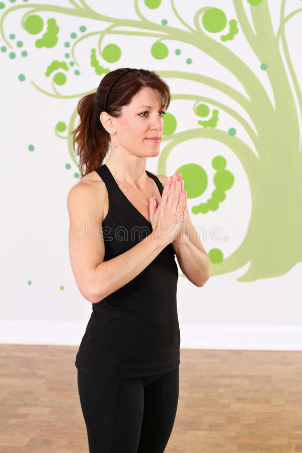 Download Namaste during yoga stock photo. Image of caucasian, adult - 22977052