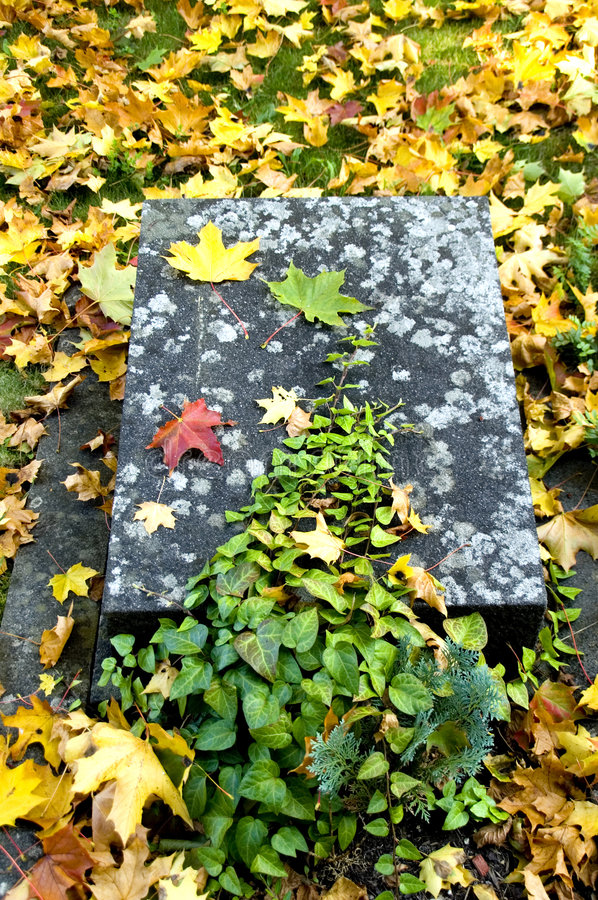 Download Nameless grave stock photo. Image of maple, pious, leaf - 1417456