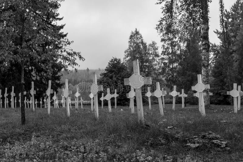 Nameless graves with rows of white wooden cross. Old cemetery with rows of white plain cross made of wood, for the criminally insane who died in the old mental royalty free stock photography