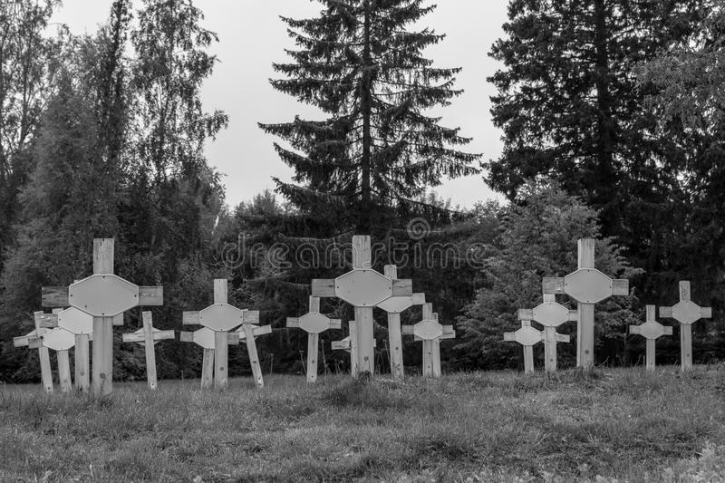 Nameless graves with rows of white wooden cross. Old cemetery with rows of white plain cross made of wood, for the criminaly insane who died in the old mental stock photo