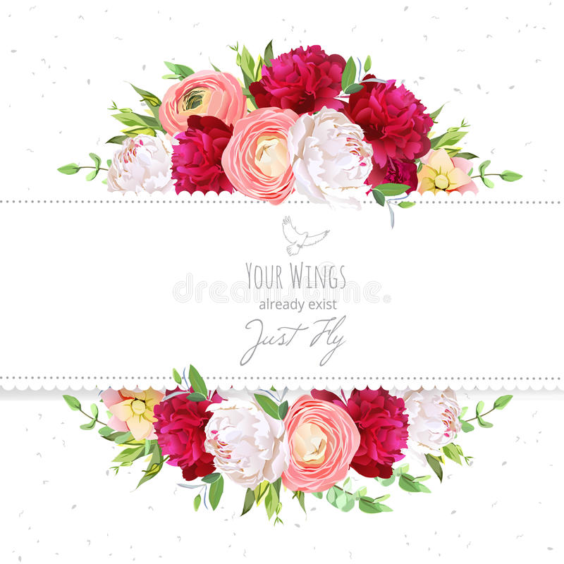 Namen de rode en witte pioenen van Bourgondië, roze ranunculus, vectorontwerpkader toe stock illustratie