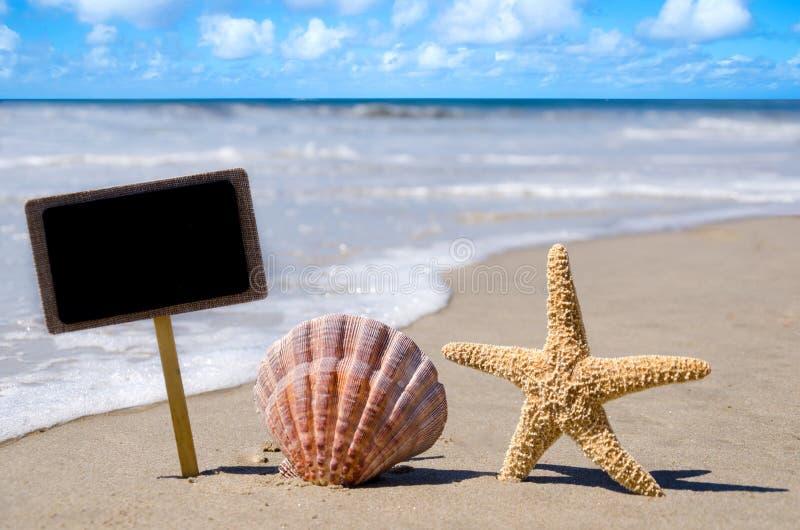 Nameplate с seashell и морскими звёздами стоковое фото rf