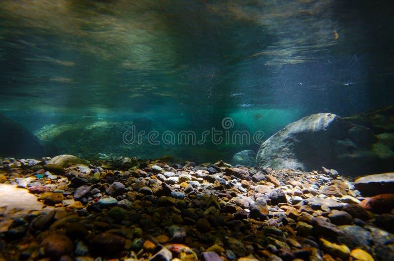Namesawa Valleys, Japan. Underwater photography series Namesawa Valleys. This image was taken by underwater SLR in Fuji Hakone Izu National Park, Japan stock photography