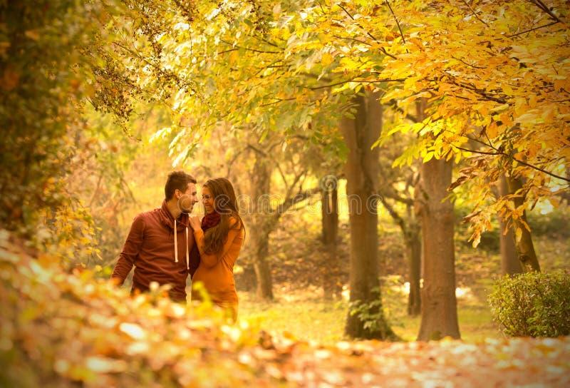Namiętna miłość fotografia royalty free