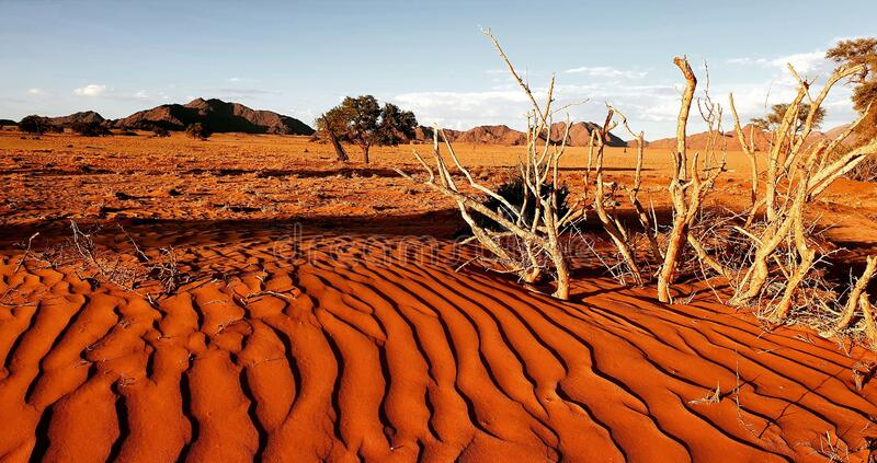 Namib-öknen, Namibia arkivbilder
