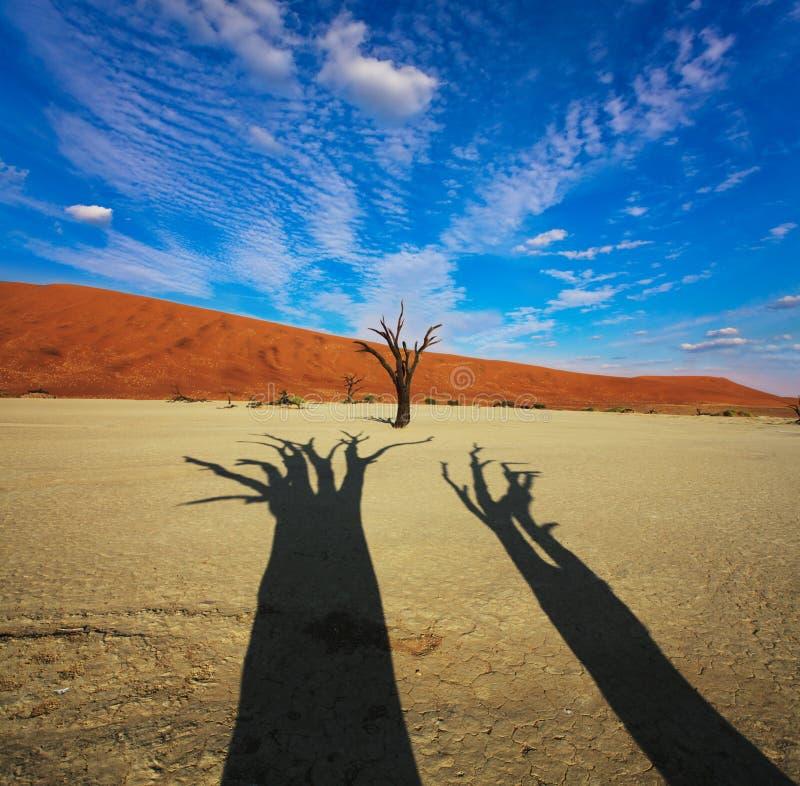 Namib foto de stock royalty free
