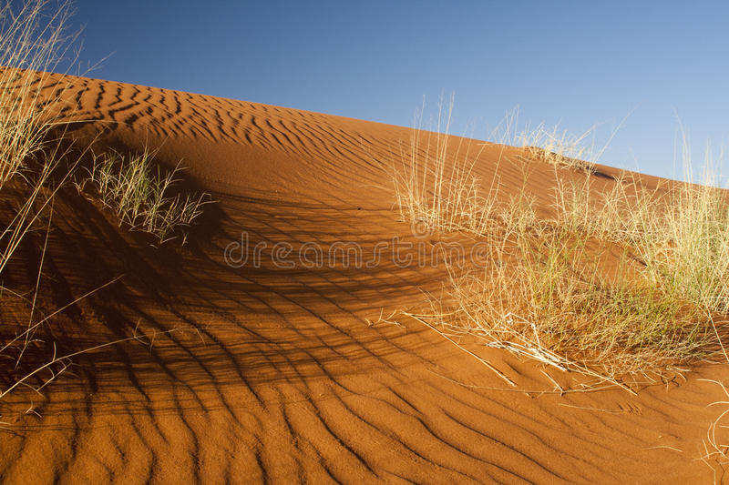 Download Namib Desert stock photo. Image of travel, outdoors, landscape - 25413058