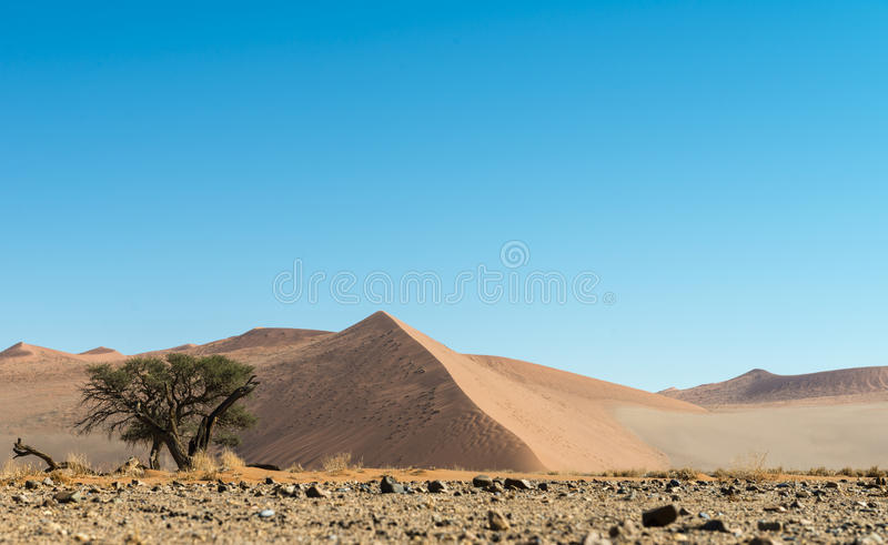 Namib Desert (Namibia). Low angle shot of dunes in the Namib Desert (Namibia stock photography