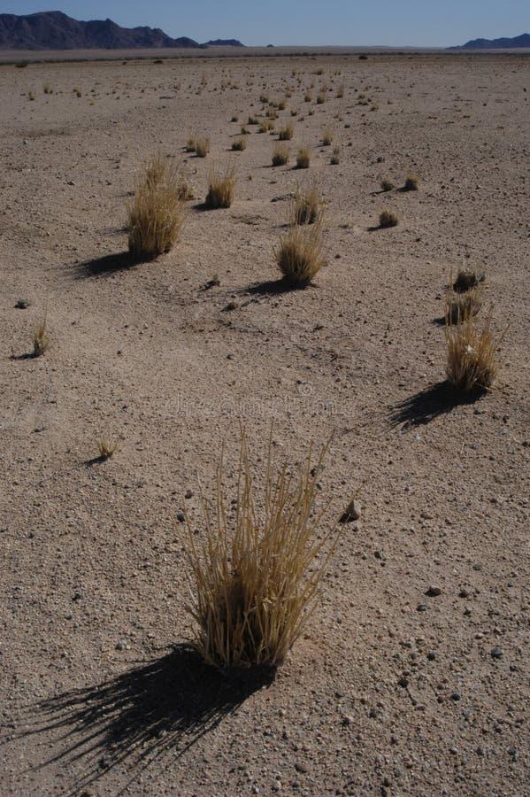 Namib desert near Solitaire, Namibia royalty free stock images